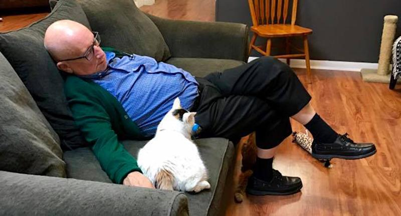 The Wisconsin man is seen asleep here with a shelter cat at the Safe Haven Pet Sanctuary Inc.
