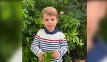 2歲路易王子奶音連發 首發聲提問生物家
