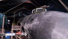 哥倫比亞毒梟也「潛艦國造」 功能升級讓西方國家驚呆了