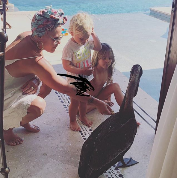 A photo of Pink and her two children.
