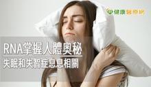 睡不好真的會傷大腦! 高醫神經部揭開睡眠的奧秘