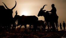 「少吃肉救地球」為何並非人人適用?