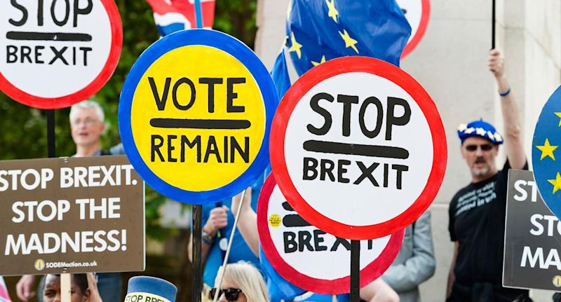 Protestors calling for Britain to remain in the European Union are seen with signs and banners outside the Houses of Parliament on May 24.