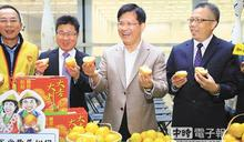 林佳龍、江啟臣 促銷台中椪柑