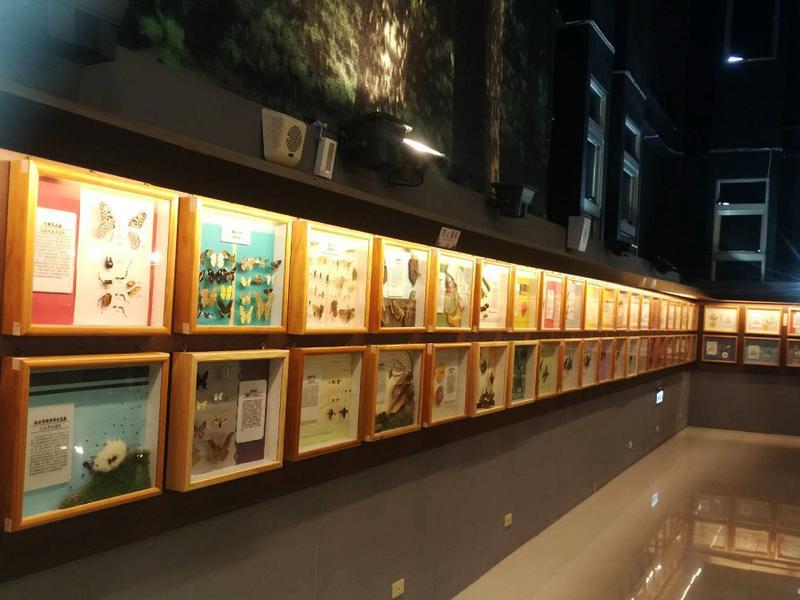 台灣標本區