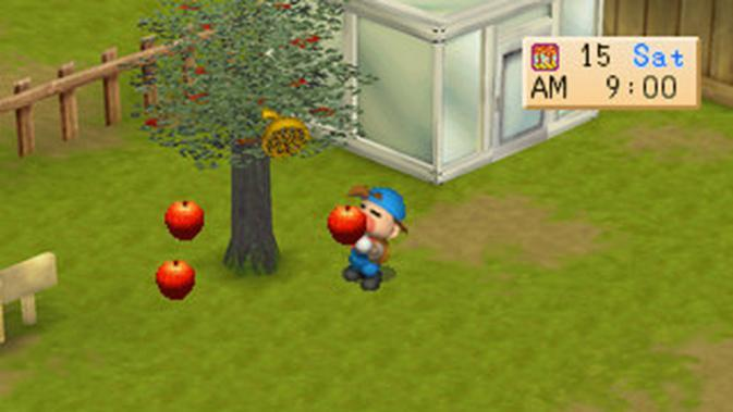 Harvest Moon Back to Nature (Sumber: Mobygames)