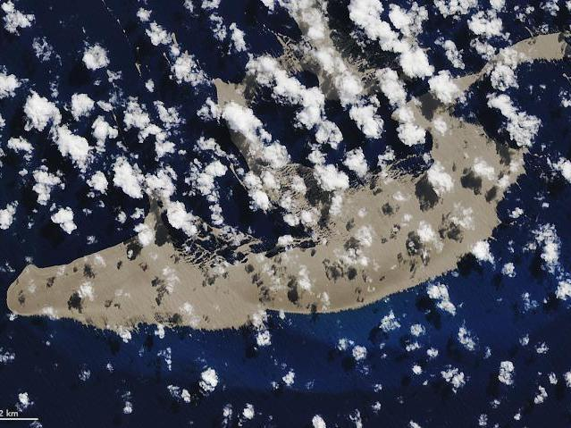 Although the pumice (pictured from space) is currently bare, organisms such as crabs and corals, will start growing on it in the coming weeks: NASA