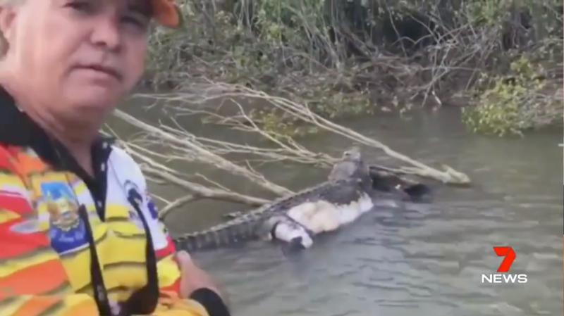 Queensland crocodile Bismarck found dead in Cardwell