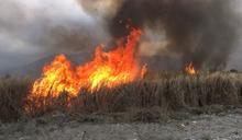 屏東鹽埔堤防野草燃燒8小時 終於熄滅