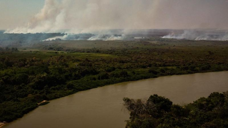 Out of control forest fire burns the area of the Brazilian Pantanal in rural Pocone, Mato Grosso, Brazil,