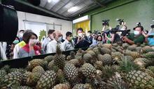 【Yahoo論壇/曾志超】鳳梨事件背後的農產品產銷問題