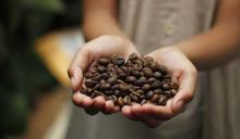 5千億杯背後的危機3/無力負擔氣候變遷造成的成本增加 哥倫比亞咖啡文化可能就此沒落