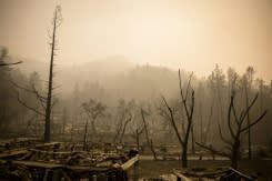 Dampak akibat kebakaran di kawasan anggur AS terungkap saat kematian terbaru dikonfirmasi