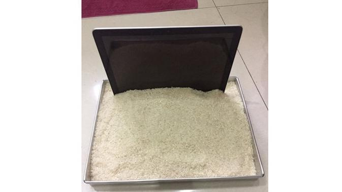 6 Momen Apes Laptop Ketumpahan Makanan Ini Bikin Nyesek (sumber: Instagram.com/halosayabunga)