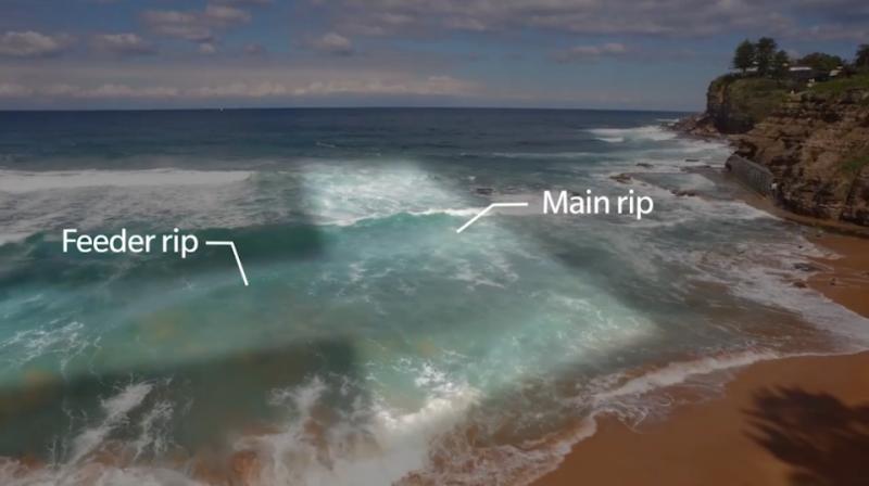 Here's the answer. Photo: Surf Lifesaving Australia