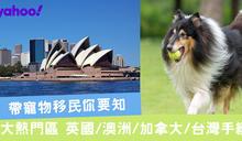 帶寵物移民你要知 4大熱門區英澳加台手續
