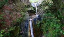 奧萬大國家森林遊樂區 優惠醫事人員入園門票免費