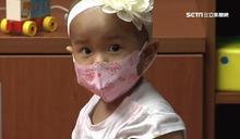 挺過10次化療 嬰抗14公分肝腫瘤