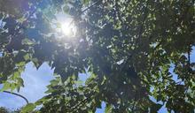 梅雨季史上第2高溫!專家曝未來最熱時間點