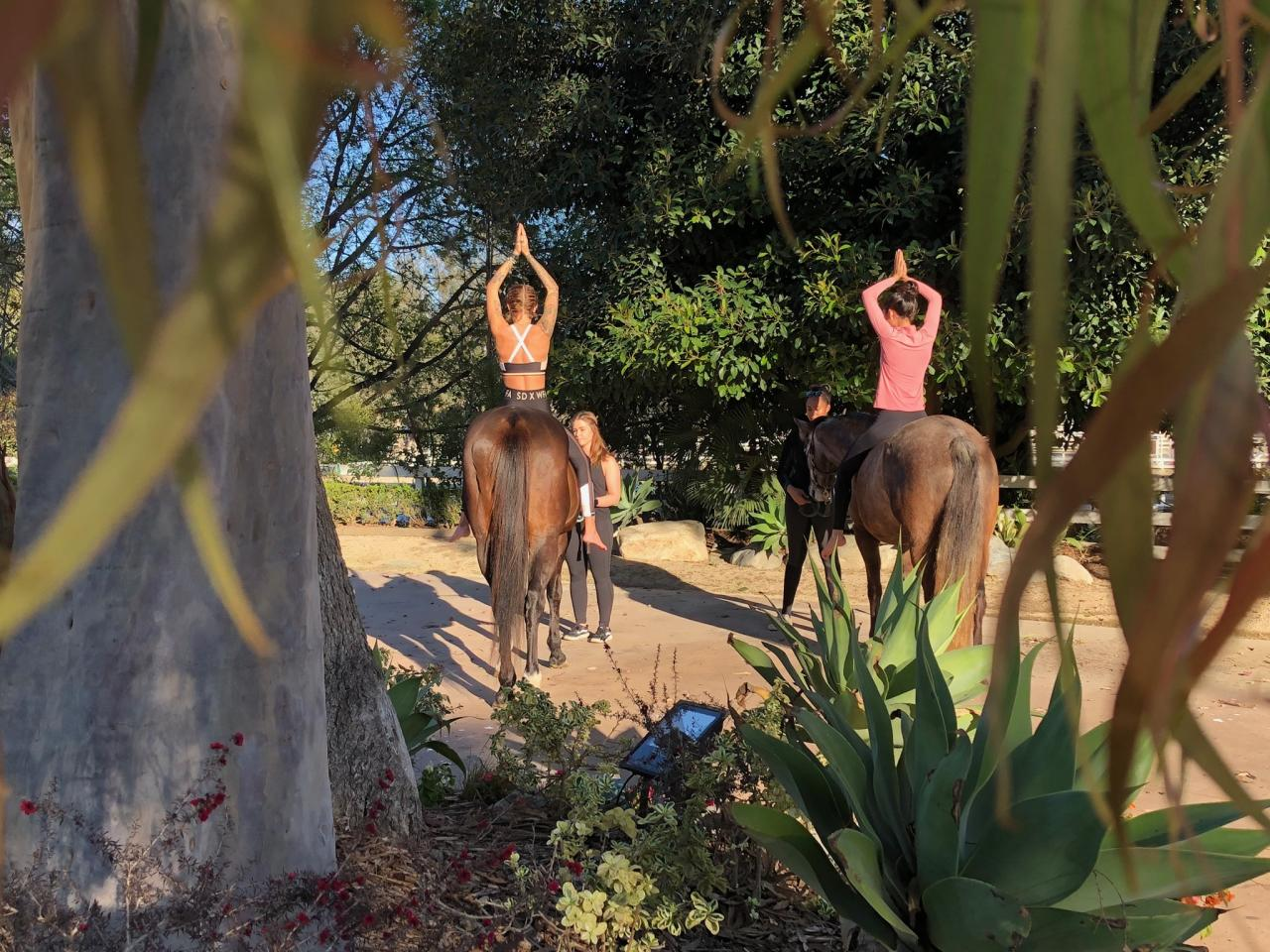 <p>It is located at SoCal Saddlery (an equestrian boutique), at the Huntington Central Park Equestrian Center. Photo: Supplied/Spirit Horse Yoga </p>