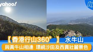 【行山路線】360度睇水牛山:與黃牛山相連 環視沙田及西貢壯麗景色
