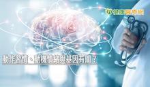 動作習慣、動機情緒與基因有關? 陽明神研所解密