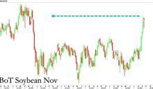 黃豆期貨觸及兩年多高點 來自中國需求推升漲勢