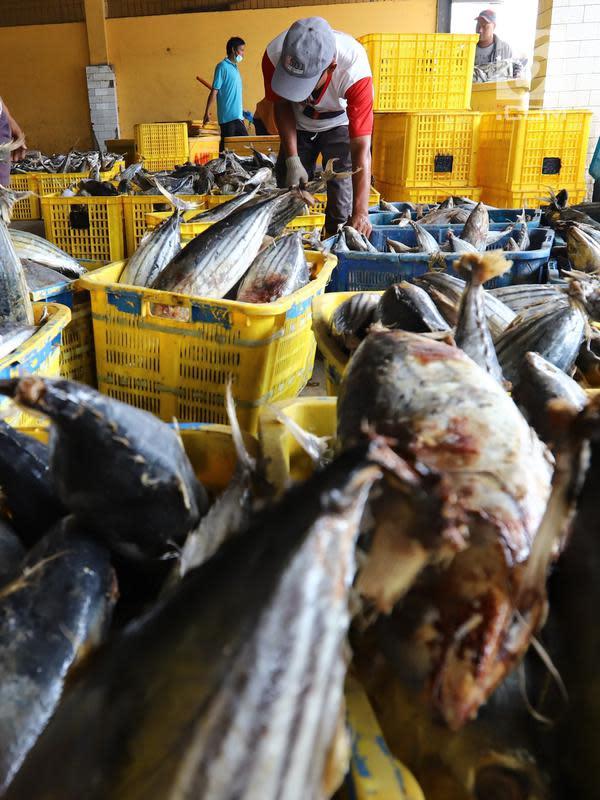 Nelayan memindahkan ikan laut hasil tangkapan di Pelabuhan Muara Angke, Jakarta, Kamis (26/10). Menurut Kementerian Kelautan dan Perikanan (KKP), ekspor produk perikanan tercatat sebanyak 510.050 ton pada semester I-2018. (Liputan6.com/Angga Yuniar)