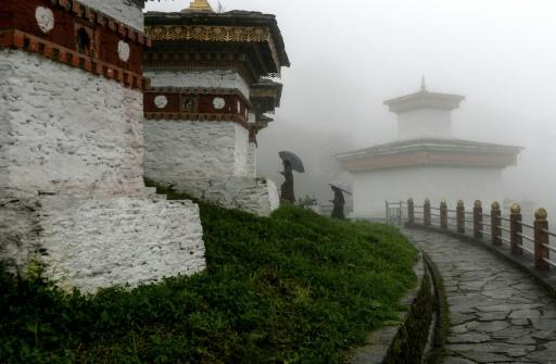 Bhutan is the only carbon negative country in the world but major obstacles stand in the way of the Himalayan kingdom's decision to follow a green path over rampant economic expansion