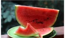 西瓜「紅肉VS黃肉」差異曝:男性要選這1色