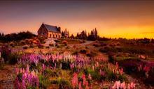 紐西蘭258坪房屋售價251萬!後院擁「天然奇景」沒人敢買
