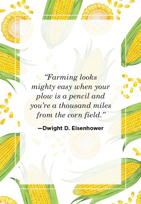 """<p>""""Farming looks mighty easy when your plow is a pencil and you're a thousand miles from the corn field.""""</p>"""