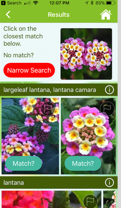 """<p>Don't know what that tree in your back yard is? Want to identify a flower you love in your neighbor's yard? Download and open this free app, and snap a pic with your smartphone. The app will compare your photo to those in a database to identify the plant in question and share basic care tips. You can also ask horticulturalists specific questions about pests and diseases for a small fee.</p><p> <a class=""""body-btn-link"""" href=""""http://www.gardenanswers.com/"""" target=""""_blank"""">GET THE APP</a></p>"""