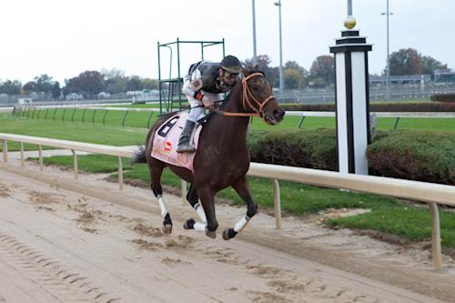 "In this Oct. 14, 2012 image provided by Allied-THA, jockey Calvin Borel rides Mine That Bird during filming at Churchill Downs for the movie ""50-1."" (AP Photo/Ben Glass, Courtesy of Allied-THA)."