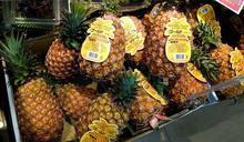 搶救臺灣鳳梨大作戰!在日本全國展開的擴大販售支持圈