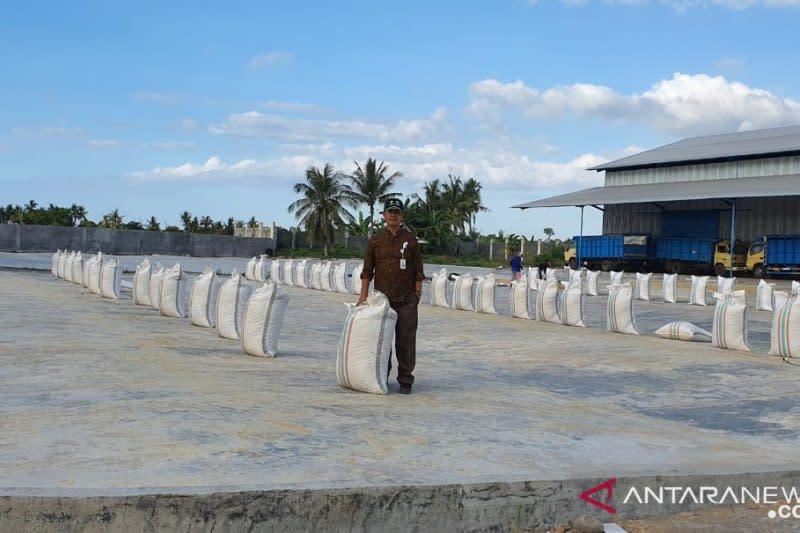 Bulog NTB gandeng 80 mitra serap 115.000 ton gabah