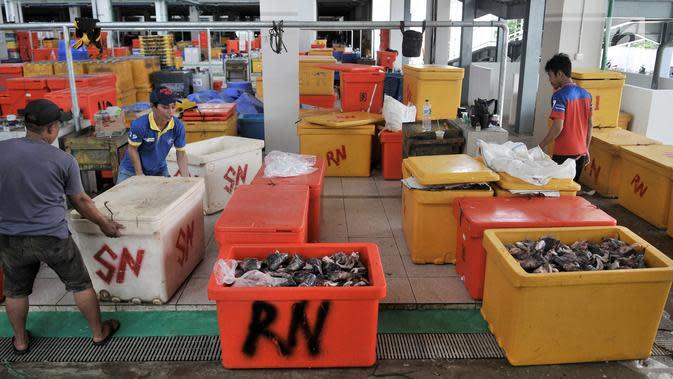 Pedagang menyortir ikan di Pasar Ikan Modern (PIM) Muara Baru, Jakarta, Kamis (21/2). Pedagang mulai menempati PIM Muara Baru sejak 16 Februari 2019. (Merdeka.com/Iqbal Nugroho)