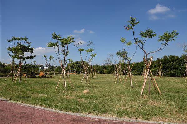 台積電在特定區綠地和公共設施用地種植1000株喬木,相當重視綠化。(圖/翻攝自徐耀昌加油讚臉書)