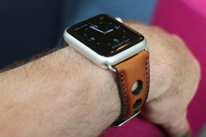 best Apple Watch bands Burkley Holo Strap