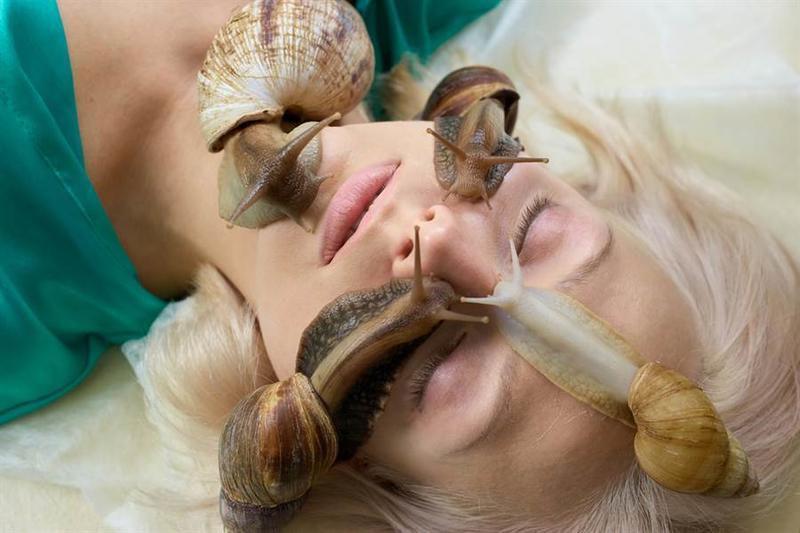 蝸牛爬滿臉吃死皮、補膠原蛋白,美容院超驚悚畫面曝光網嚇傻。(示意圖/達志影像)