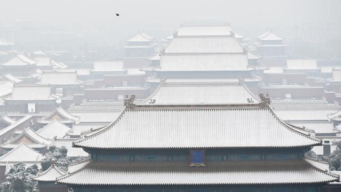 Seekor burung terbang di atas Kota Terlarang setelah salju turun di Beijing (30/11/2019). Beijing mengalami hujan salju pertama di seluruh kota sejak awal musim dingin dari 29 hingga 30 November 2019. (AFP Photo/Wang Zhao)