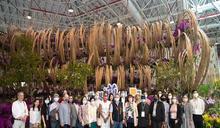 駐台使節參訪世界蘭展 中市府歡迎體驗台中花卉饗宴
