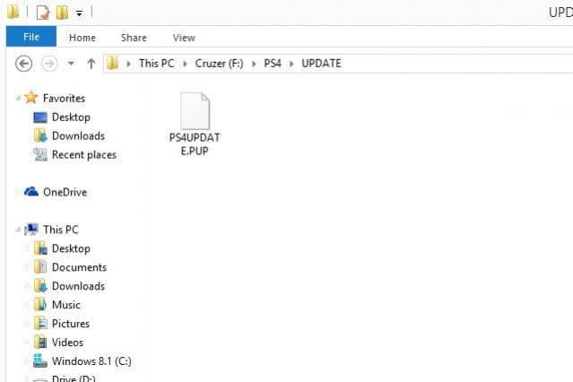 PS4 Update file