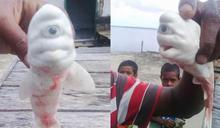 是真的!印尼漁民驚見「獨眼白鯊」 海洋專家曝:不到50隻