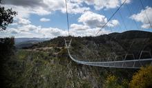 畏高慎入 全球最長吊橋啟用 穿窿橋底嚇壞人