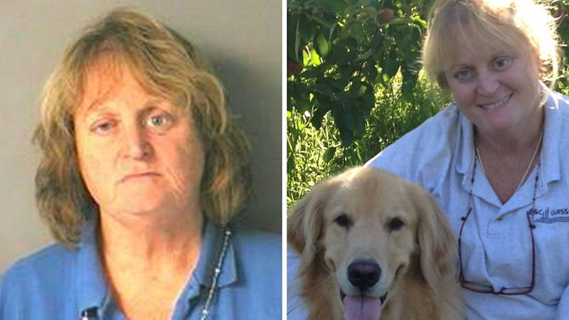 Woman 'watches her elderly golden retriever drown after shoving him in lake'