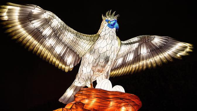 Gambar pada 15 November 2019 menunjukkan patung burung elang diterangi lampu berwarna sebagai bagian dari pameran festival cahaya di Kebun Binatang Jardin des Plantes, Paris. Festival Cahaya bertajuk