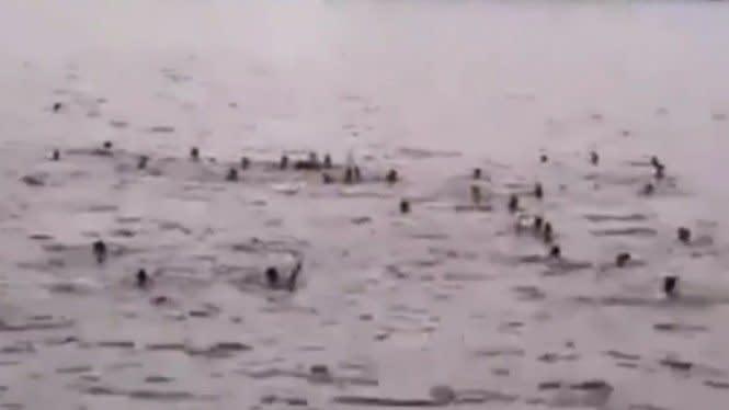 Heboh Remaja Tawuran di Laut, Ternyata Cuma Cari Sensasi agar Viral