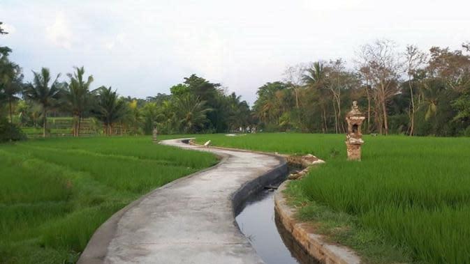 Kementerian PUPR menyalurkan anggaran Rp 11 triliun untuk Program Padat Karya Tunai berupa pembangunan irigasi, perbaikan jalan lingkungan, rumah subsidi, penanganan kawasan kumuh, peningkatan kualitas air minum dan sanitasi. (Dok Kementerian PUPR)