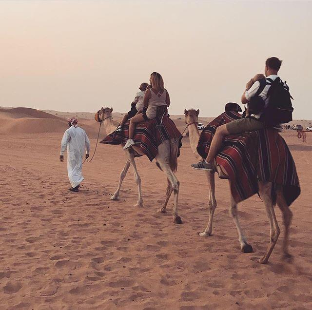 They travelled through Dubai on camels. [Photo: SWNS]